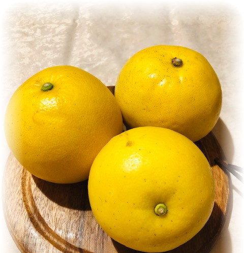 ジューシーオレンジ
